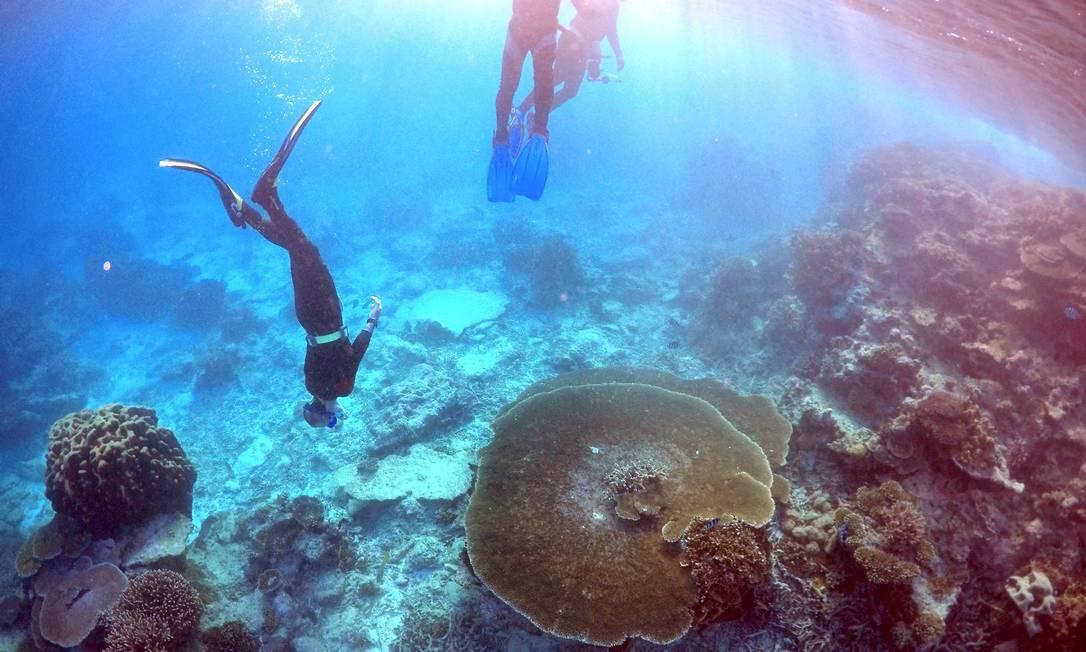 Na quarta-feira a Unesco vai dizer se vai colocar a Grande Barreira de Corais na lista de Patrimônios da Humanidade em vias de extinção, um movimento que o governo australiano quer evitar a todo custo, e para o qual conta com forte lobby no exterior DAVID GRAY / REUTERS