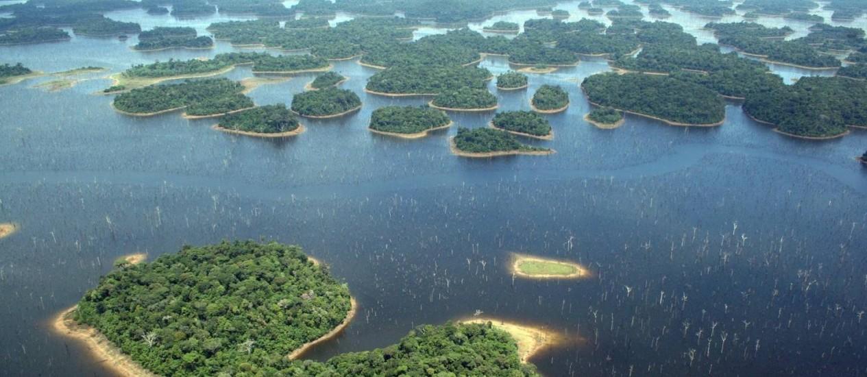 Usina tem 3.546 ilhas, muitas com área inferior à necessária para a sobrevivência de animais de grande porte Foto: Fotos de divulgação/Eduardo M. Venticinque