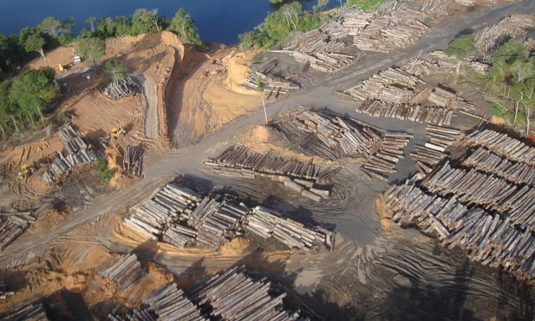 Crime ambiental. Toras jazem no porto aberto ilegalmente pela Jari Florestal no Pará: fraude Foto: / IBAMA/DIVULGAÇÃO