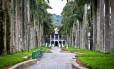 Rua das Palmeiras, com o Museu da Imigração ao fundo, dois cartões-postais de Joinville
