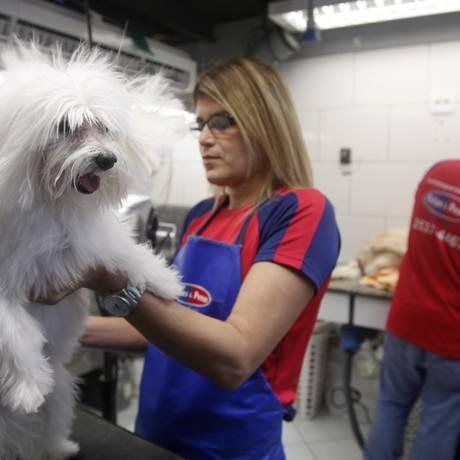 Líder do ranking. Serviços em pet shops foram os que mais subiram até maio. Na Patas e Penas, alta foi de 11% Foto: Fabio Rossi