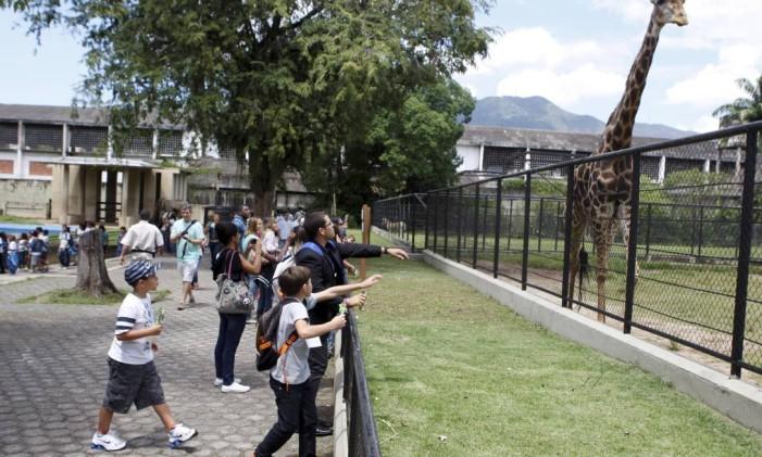 Visitar o Jardim Zoológico é uma boa pedida para as férias Foto: Gustavo Stephan / Agência O Globo (08/09/2013)