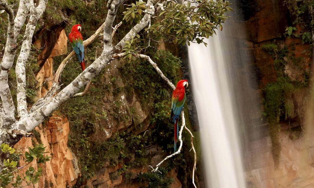 Visão deslumbrante em cachoeira da Chapada dos Guimarães Foto: Marcelo Piu / Agência O Globo