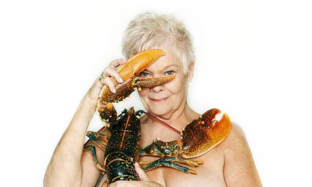 Aos 80, Judi Dench topou posar apenas com uma lagosta para uma campanha contra a caça predatória nos oceanos Fishlove/Divulgação