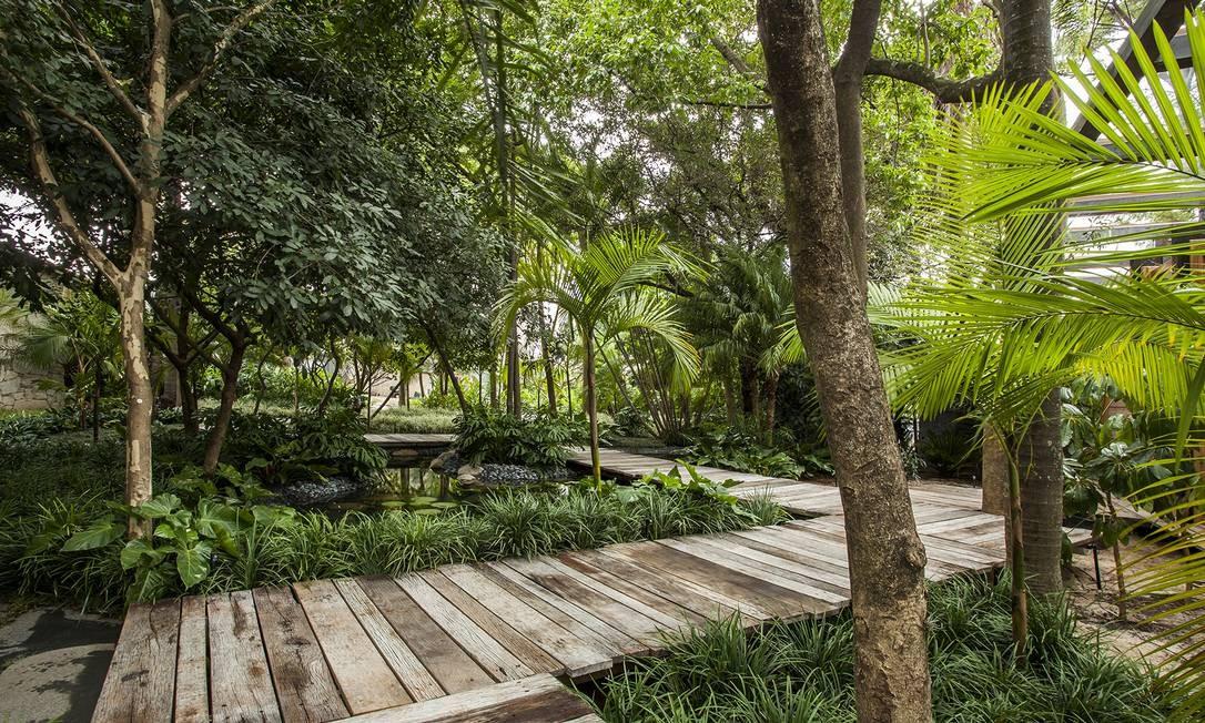 O Jardim do Bosque foi criado pelo paisagista Gilberto Elkis em uma área de 800m². Espécies tropicais foram escolhidas para o espaço, que também conta com um lago Foto: Divulgação