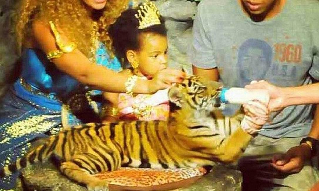 Como uma rainha: Blue Ivy encontrou um filhote de tigre esta semana durante umas férias de luxo na Tailândia antes de ir para o Camboja © Instagram