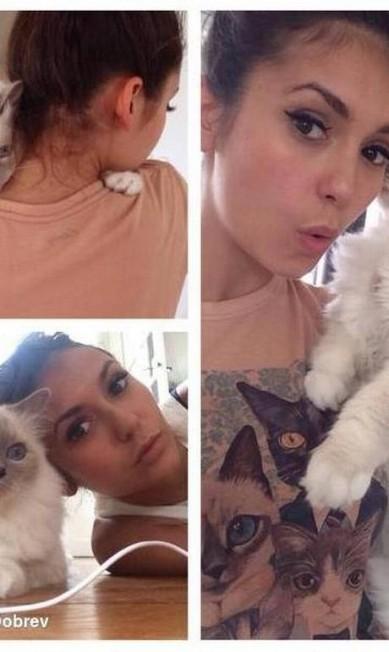 Mais um gato de Nina Dobrev Reprodução/ Instagram