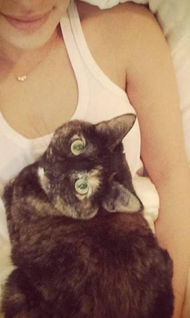 Lea Michele com mais um gato Reprodução/ Instagram