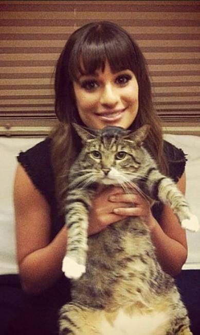 Lea Michele também costuma exibir gatos no Instagram Reprodução/ Instagram