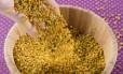 Pólen de abelha é chamado de 'bifinho verde' por apicultores