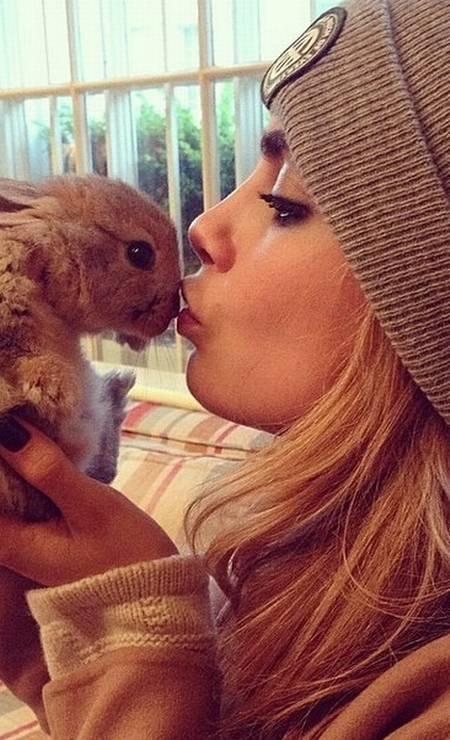 Cecil Bunny Delevingne é um sucesso no Instagram. O coelhinho da top Cara Delevingne tem mais de 107 mil seguidores - sendo que seu perfil na rede foi lançado em maio, com o clique acima Foto: Reprodução/ Instagram