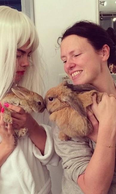 """Dia desses, Cecil posou ao lado de uma pretendente: a coelha (bem mais velho) de Katie Grand, editora da revista """"Love"""" Reprodução/ Instagram"""