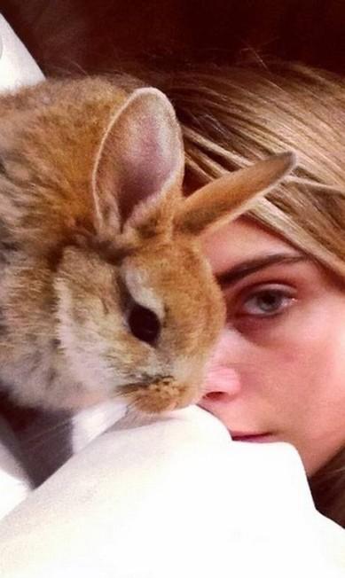 Cecil na cama com Cara Reprodução/ Instagram