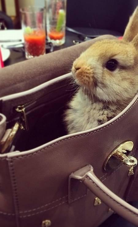 Cecil posando com sua bolsa Mulberry, da qual Cara é garota-propaganda Foto: Reprodução/ Instagram