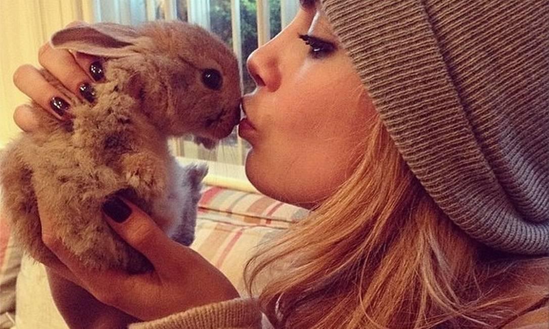 A modelo Cara Delevingne está apaixonada. Mas é por sua coelhinha de estimação. Ela está tão apegada, que criou uma conta no Instagram para o bichinho, que recebeu o nome de Cecil Bunny Delevingne. Não é fofo? Reprodução / Instagram
