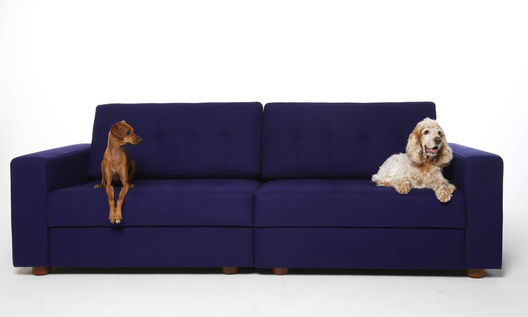 A vira-lata Belinha e a cocker Isabela no sofá Sampa, de Fernando Jaeger, em panamá. R$ 5.829 (www.fernandojaeger.com.br) Foto: Camilla Maia / Agência O Globo