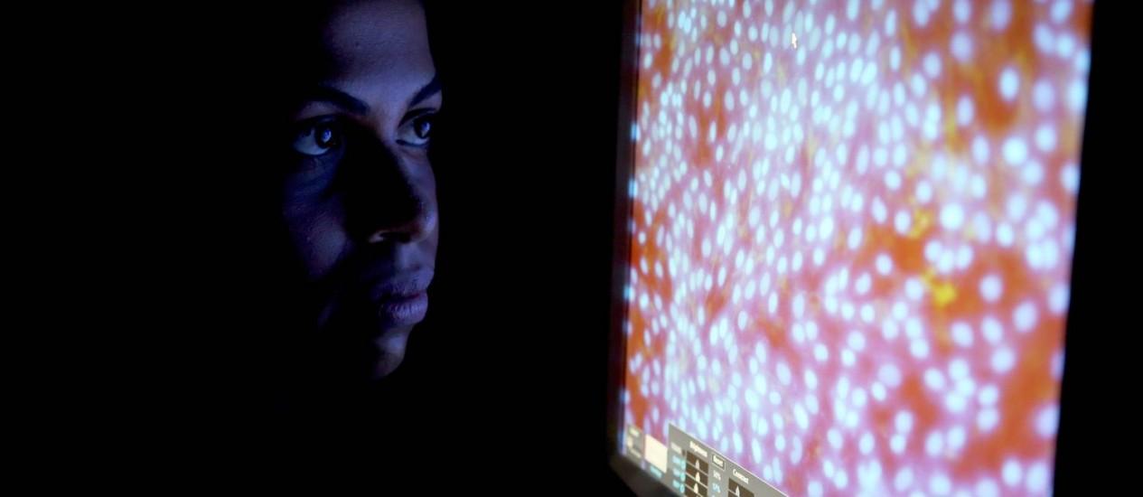 A cientista Luzia Sampaio, da UFRJ, e a imagem amplificada de uma das culturas de células dos rins usadas para estudar a ação terapêutica de endocanabinoides Foto: Custódio Coimbra