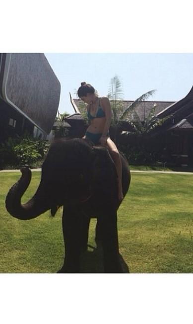 Irmã mais nova de Kim, Kylie Jenner não teve medo e passeou de carona com um elefante Reprodução Instagram