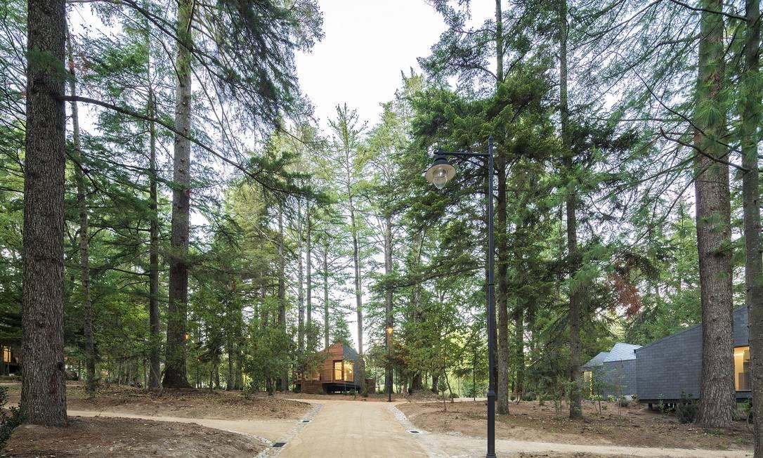 As casas são próximas mas com privacidade: um não precisa ver o outro Divulgação
