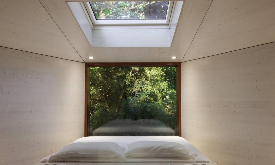 Janela e teto aberto para o verde na casa na árvore Divulgação
