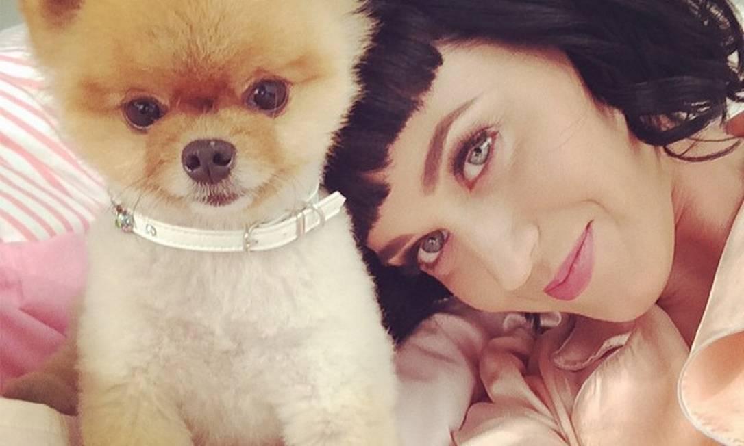 Katy Perry e o seu bichinho: será de pelúcia? Instagram