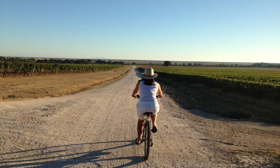 Dezenas de bicicletas estão disponíveis para os hóspedes Renata Araújo