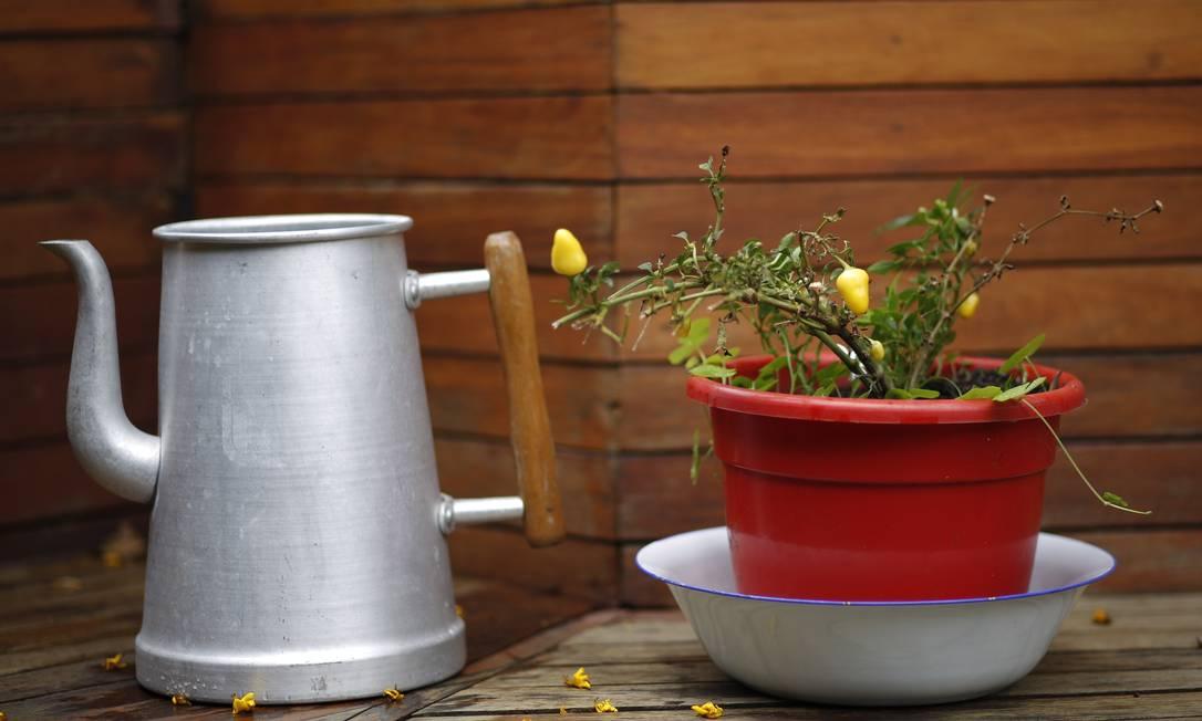Bule de alumínio e pimenteira sobre bacia esmaltada no jardim Paula Giolito / Agência O Globo