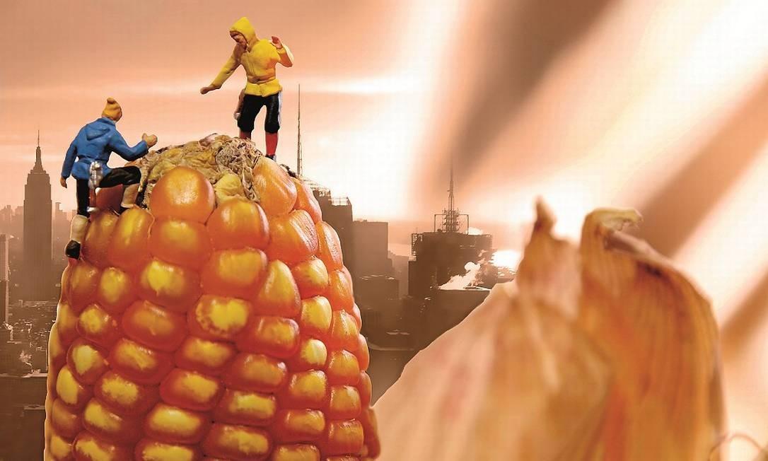 Alpinistas em espiga de milho Foto: Terceiro / Reprodução
