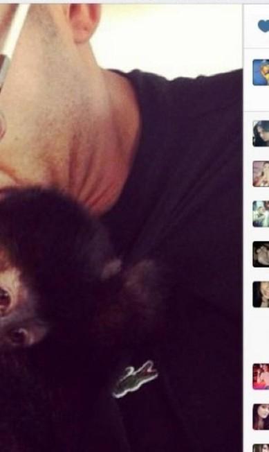 Xodó: o jogador Emerson Sheik, do Corinthians, publicou foto beijando Cuta, sua macaca de estimação, no Instagram Terceiro / Reprodução