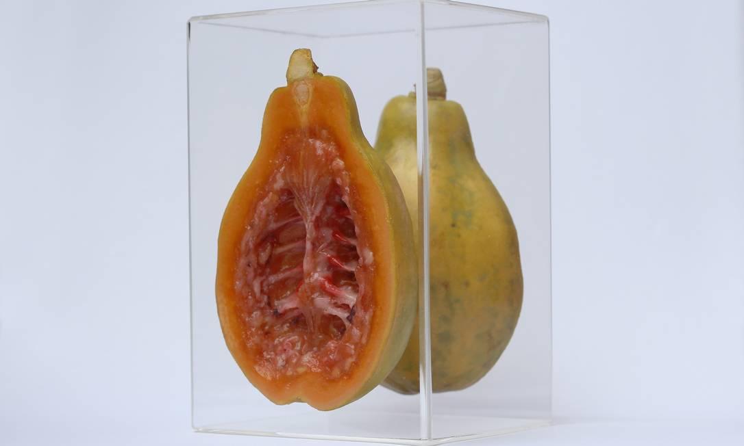"""Fruta da série """"Hybris"""" mistura a costela animal com uma fruta: pintura hiper-realista Terceiro / Divulgação"""