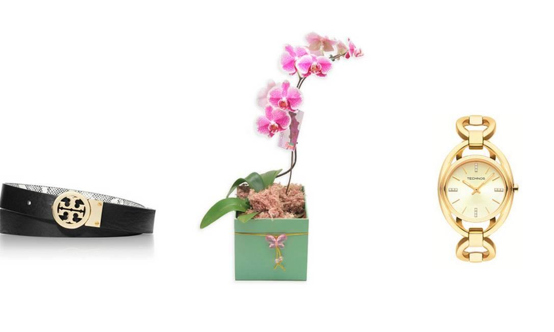 Cinto Tory Burch (21 3252-2522), R$ 600 / Orquídea Phalaenopsis exótica à venda no Zona Sul (21) 2122-7070, R$ 124,90 / Relógio modelo 1L22WH4X da Technos (21 4003-2261), R$ 440 Foto: Montagem sobre fotos de divulgação