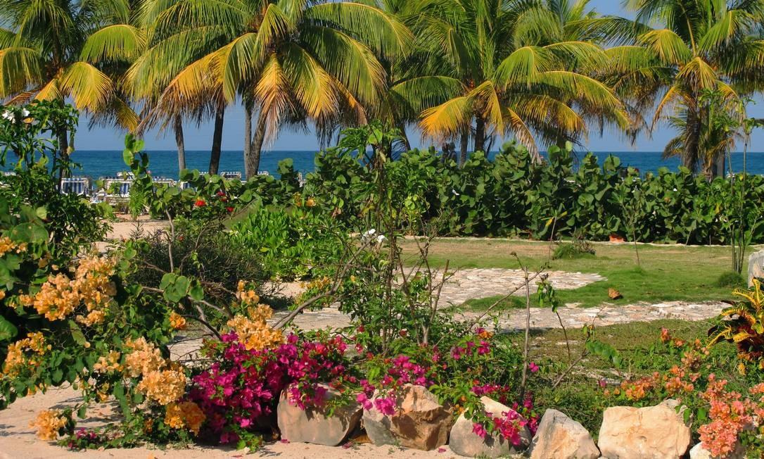 O local é porto de parada de transatlânticos, e os passageiros podem ficar por até seis horas em terras haitianas Talita Duvanel / Talita Duvanel / Agência O Globo