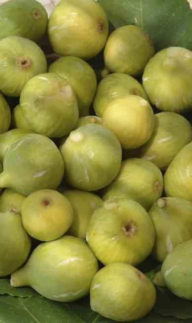 Os figos brancos estão nas saladas e em doces variados. Giuseppe Puppo