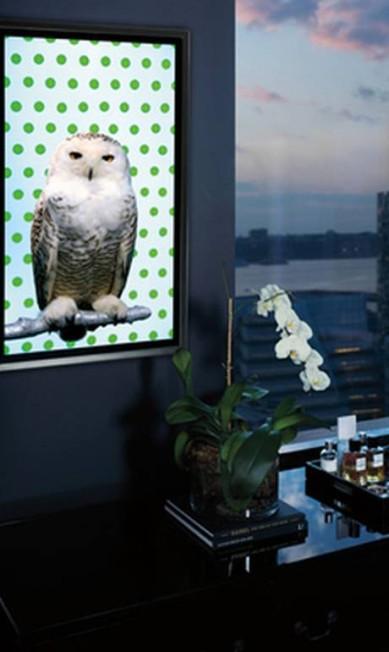 Uma quandro interativo de uma coruja, feito por Robert Wilson, sai por US$ 70 mil, cerca de R$ 140 mil! O porquê desse preço? A coruja pisca os olhos e mexe a cabeça Reprodução / Neiman Marcus