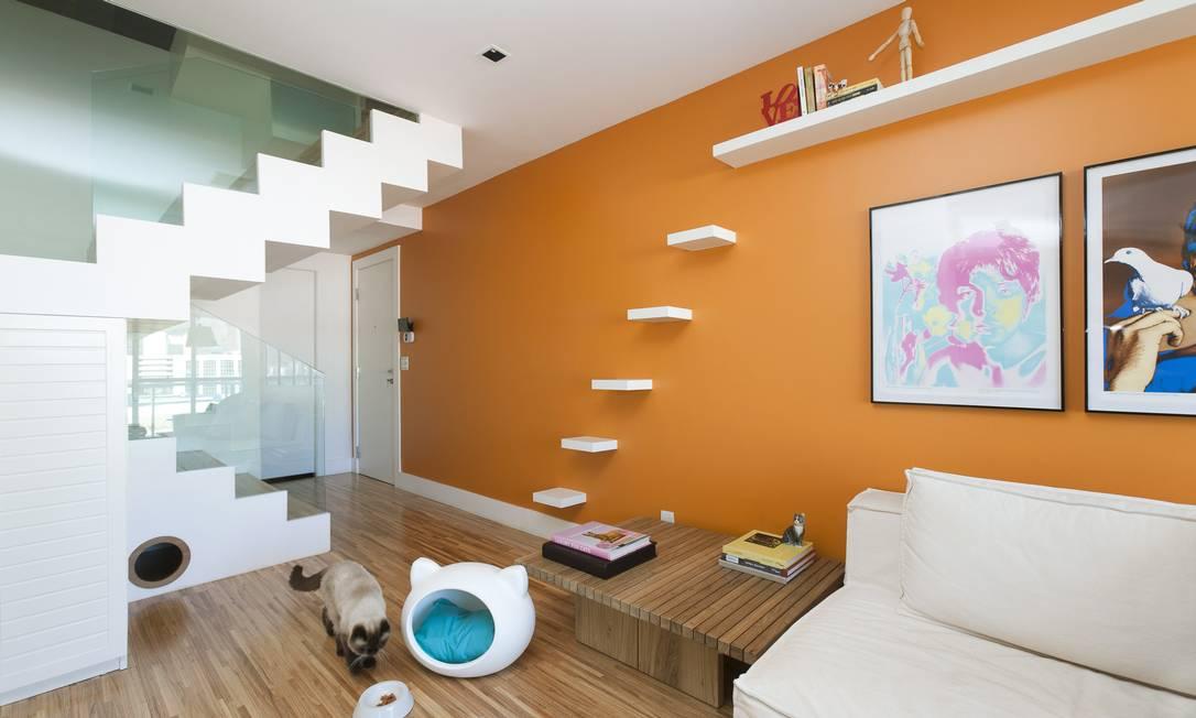No projeto da arquiteta Paola Ribeiro, prateleiras para subir e abrigo embaixo da escada para os gatinhos. Reportagem: Isabela Caban Leo Martins / O Globo