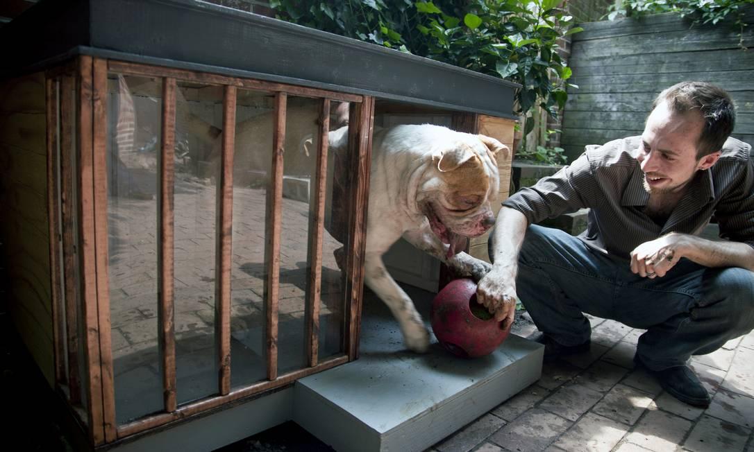 O arquiteto Brian Pickard desenhou esta casa para Thor, o cachorro de seu vizinho, na Philapelphia STEVE LEGATO / Steve Legato/The New York Times