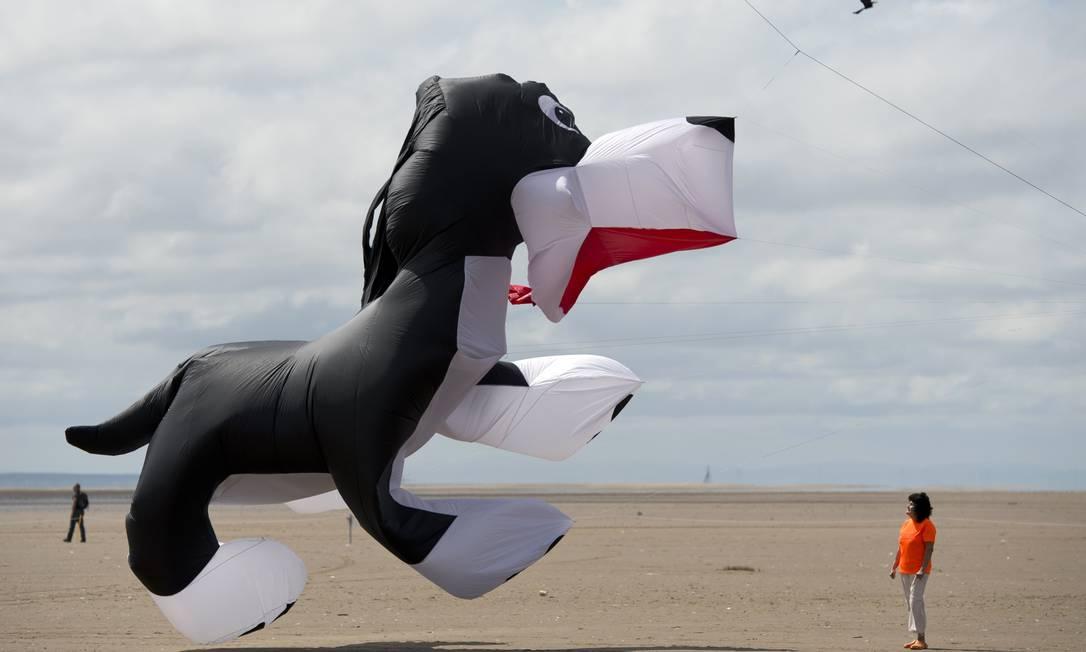 Com a ação do vento, as pipas ganhavam movimento OLI SCARFF / AFP