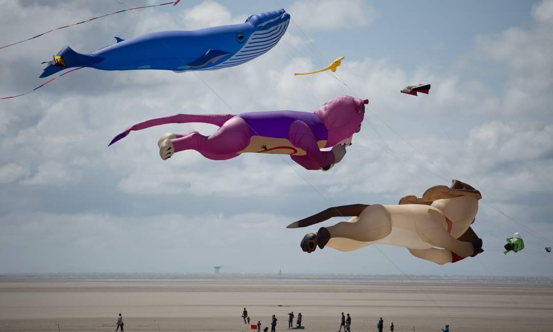 Cães e baleias estão entre os modelos exibidos OLI SCARFF / AFP