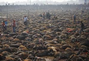 Animais sacrificados no festival de Gadhimai em 2014 Foto: Reuters/Navesh Chitrakar