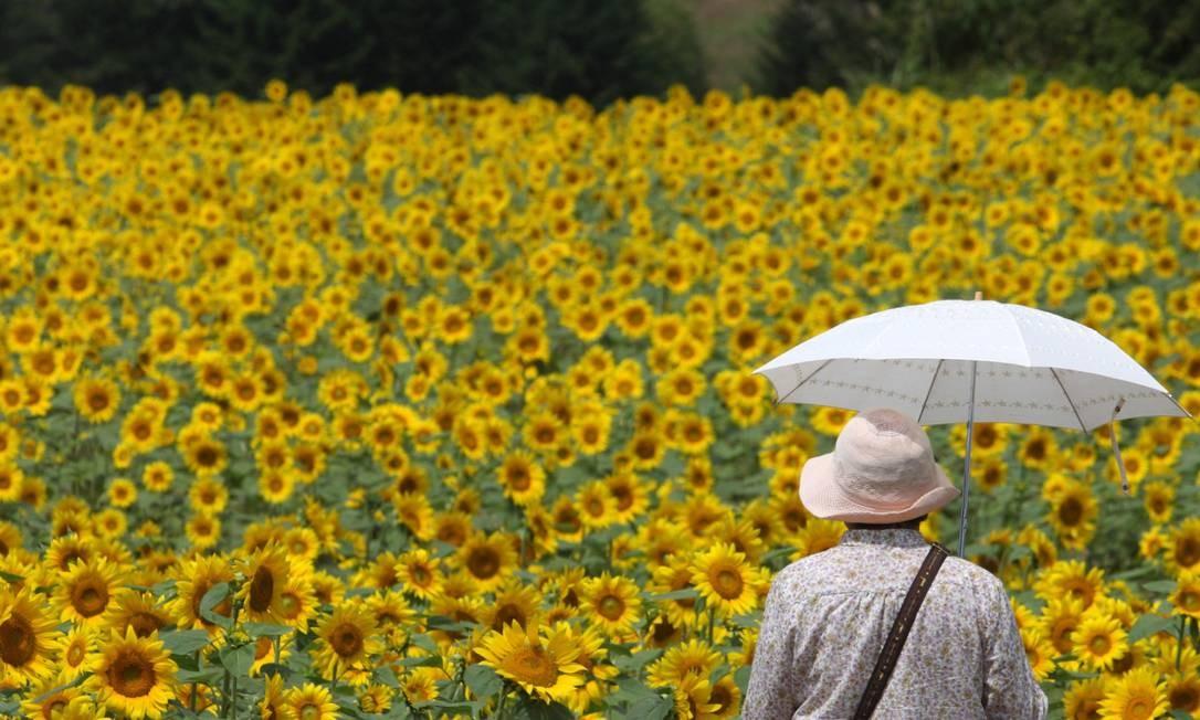 Idosa em jardim no Japão: estudo abre caminho para pesquisas de terapias que combatam perda de eficácia do sistema imunológico com a idade, trazendo mais qualidade de vida para os idosos num contexto de uma população mundial cada vez mais envelhecida Foto: Tomohiro Ohsumi/Bloomberg