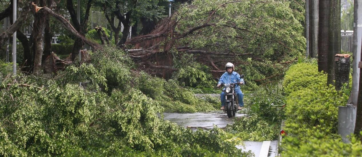 Em Taipei, árvores derrubadas e destruídas viraram cenário comum após passagem do tufão Foto: PICHI CHUANG / REUTERS