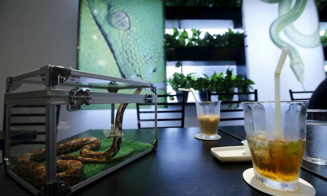 Para desfrutar de comidas e bebidas enquanto observa uma das cobras sobre a mesa, o cliente precisa pagar cerca de US$ 8 TORU HANAI / REUTERS