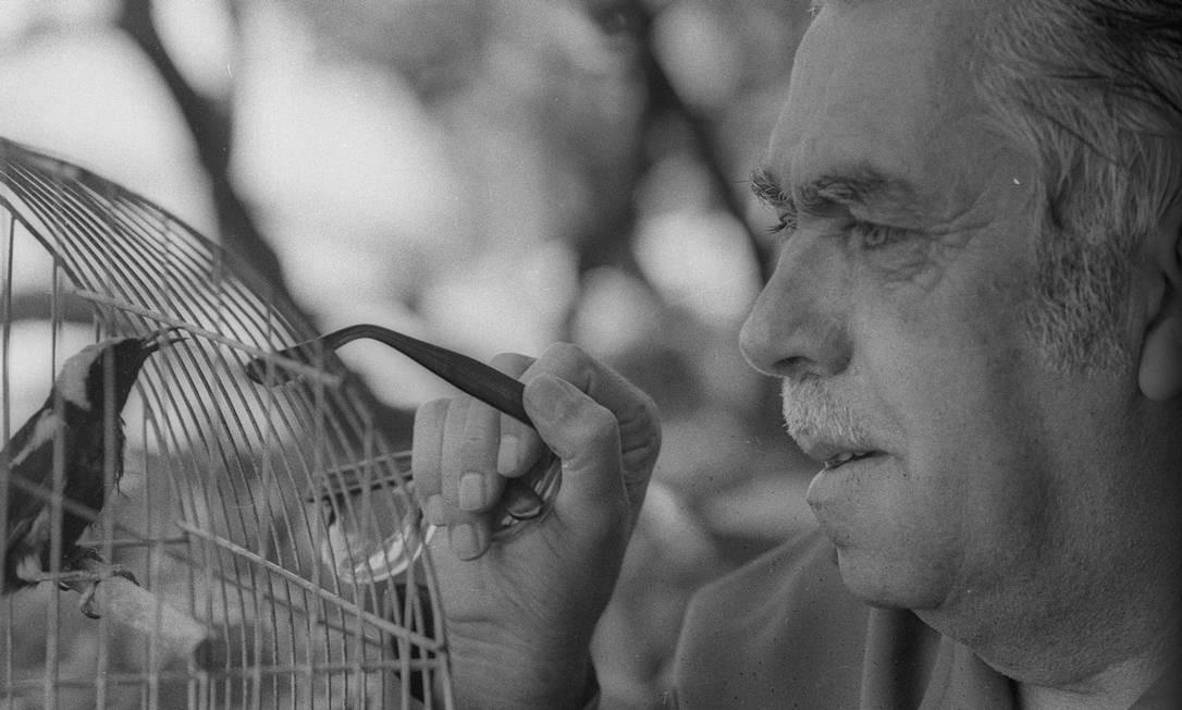 Rubem Braga dedicou várias crônicas aos seus amigos escritores Foto: Luiz Pinto / Agência O Globo