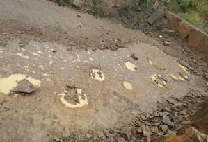 As pegadas encontradas na Alemanha Foto: Reprodução/Facebook