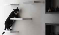 Prateleiras do armário viram escadas para os gatos Foto: Pedro Teixeira / Agência O Globo