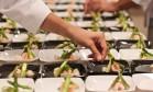 Cozinheiros finalizam os pratos nos bastidores do auditório principal do Rio Gastronomia Foto: Cecilia Acioli / O Globo