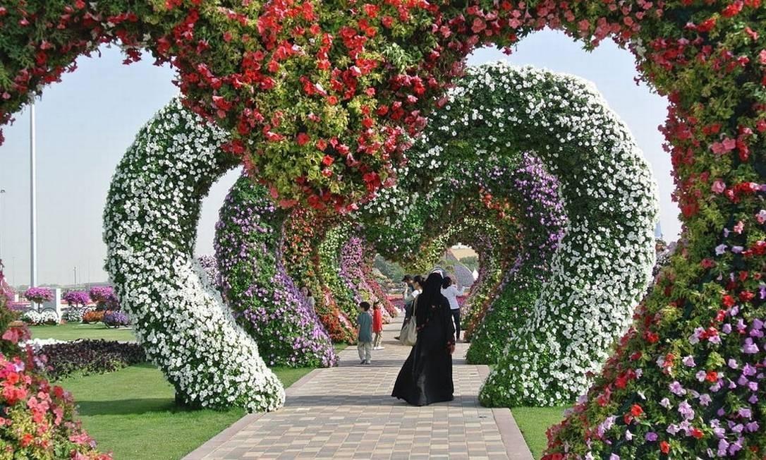 Com 150 milhões de flores, é considerado o maior jardim natural do mundo Foto: Reprodução/fubiz.net