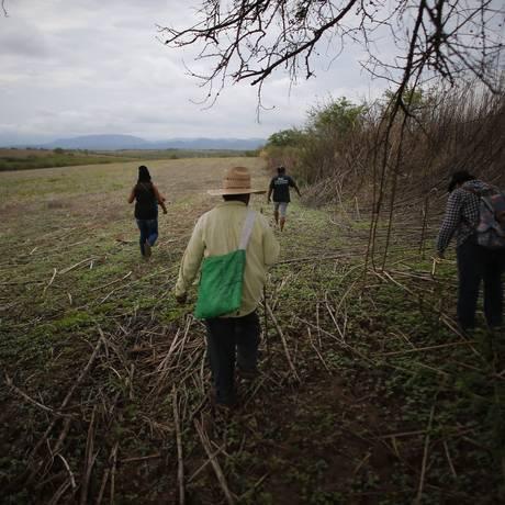 Grupo de parentes de pessoas desaparecidas caminham em um campo em busca de uma possível cova clandestina depois de terem recebido uma denúncia anônima, em Iguala Foto: Dario Lopez-Mills / AP
