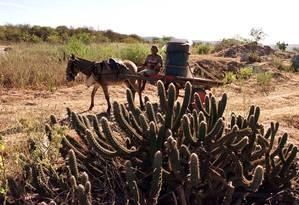 Homem procura água em Monteiro (PB) Foto: Josenildo Tenório