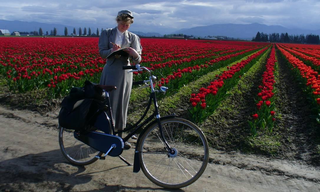Passeio por campo de tulipas Divulgação